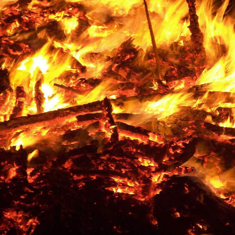 O Poder das Folhas | Como povo nômade, a fogueira - ou melhor, o fogo - tem, para os Ciganos, um significado essencial de subsistência e proteção. Muito utilizada nos...
