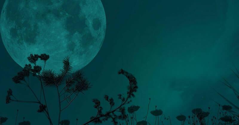 MAGIA | Lua Vazia: Instrospecção e Imprevisibilidade